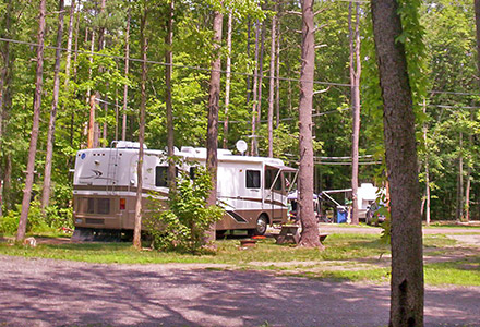 Shady RV Site